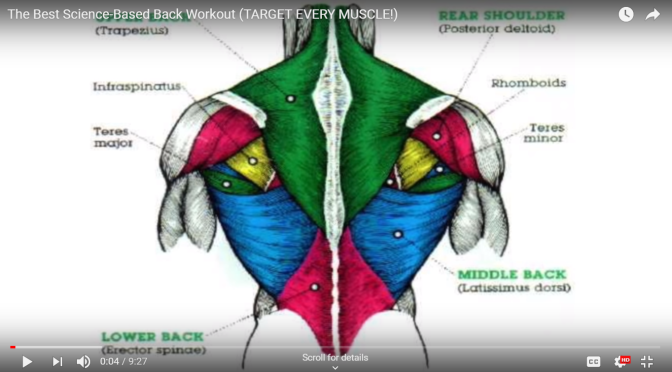 Youtube: The Best Science-Based Back Workout